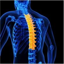 rib-sprain